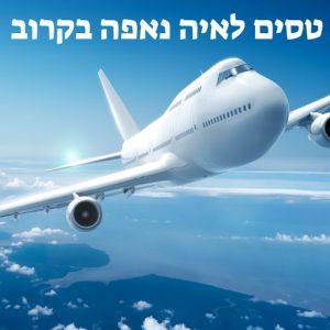 טסים לאיה נאפה בקרוב